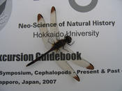 gragonfly on the excursion guidebook