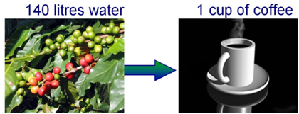 Water consumption to produce one cup of coffee