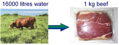 Water consumption to produce one kg beef