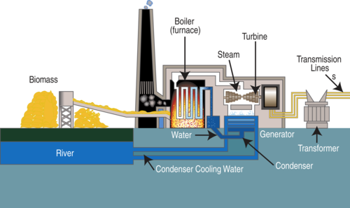 Biomass fired power plant diagram