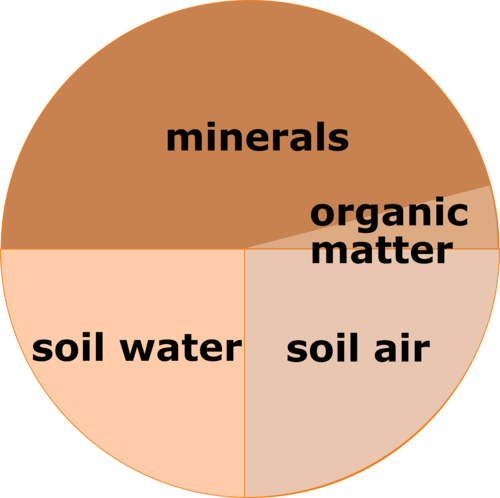 Soil composition: minerals 46%, soil air 25%, soil water 25%, organic matter 4%.