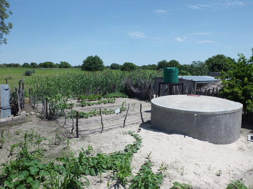 Rainwater harvesting facilities in the village of Epyeshona - household  approach