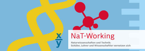 NaT-Working_Logo